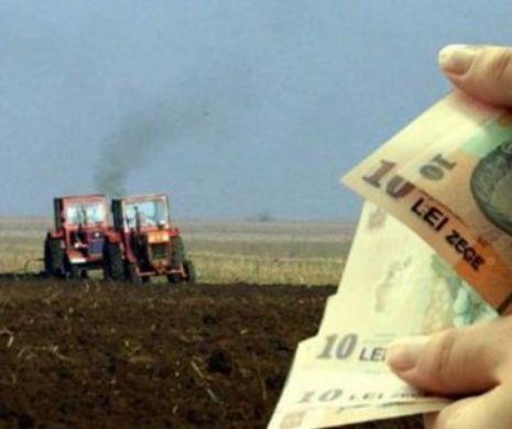 Milioane de români primesc bani de la stat. 1,94 miliarde de euro, puse la bătaie