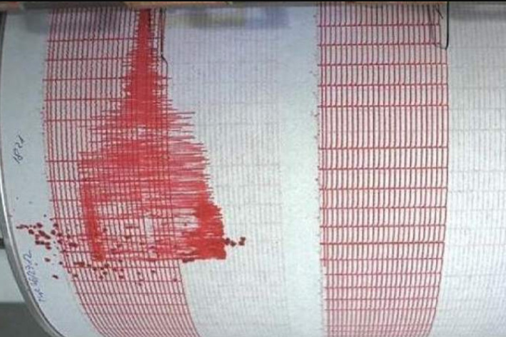 Cutremur puternic în miez de noapte. Magnitudine de 5,3 grade!