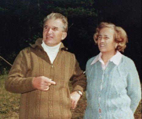 Măgărița în călduri. O poveste despre Elena Ceaușescu și codoșlâcul angajaților