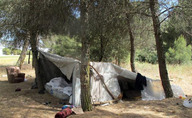 Sclavii usturoiului, în Spania. Trudeau 7 zile din 7, câte 12 ore pe zi