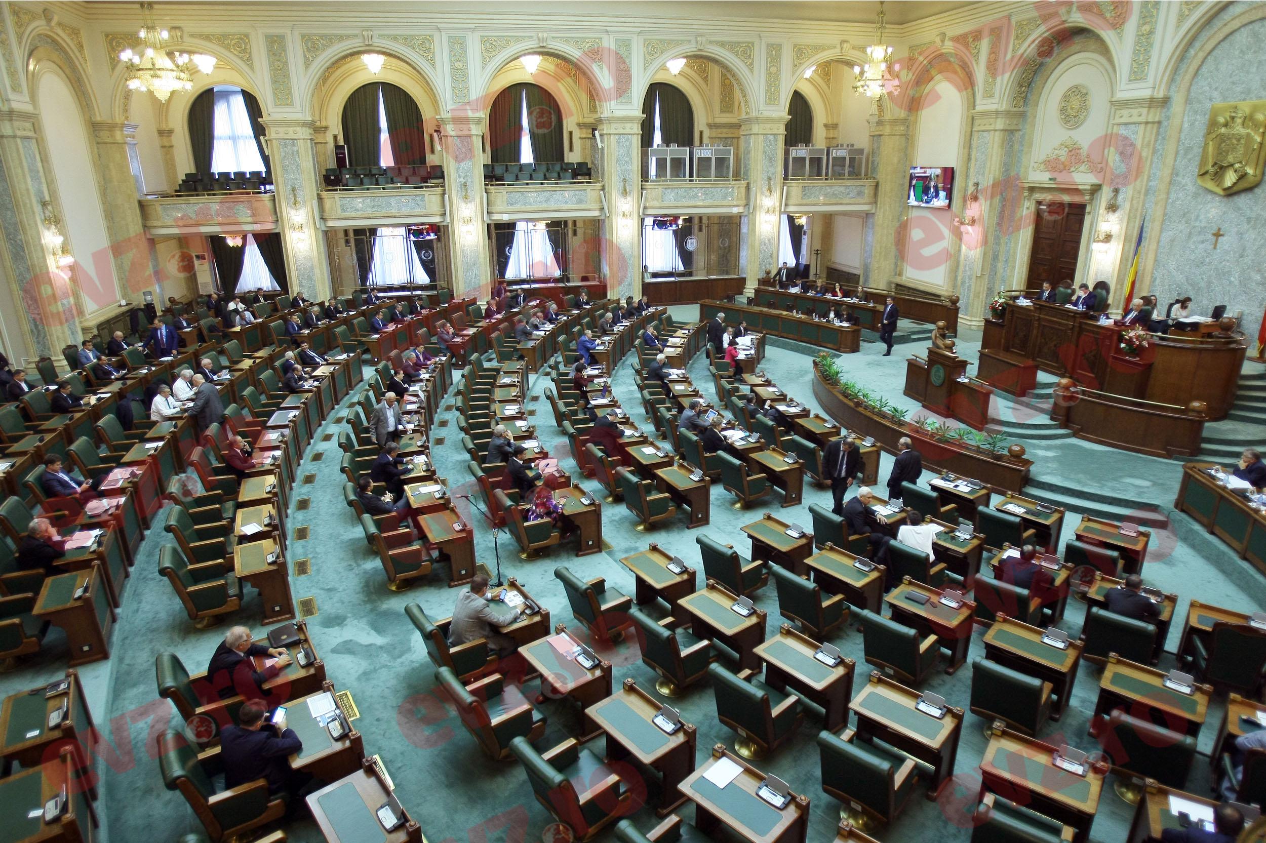 PSD va decide cine va fi noul președinte al Senatului