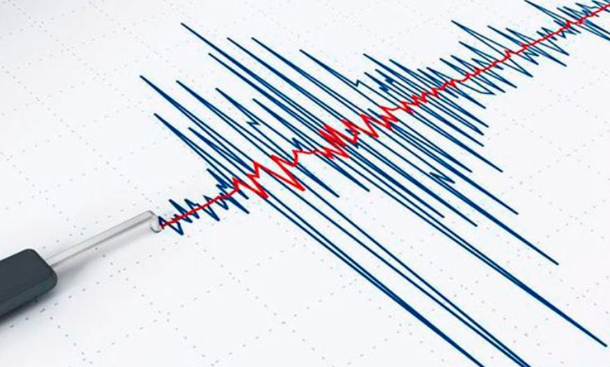 Cutremur în România. Ce au înregistrat aparatele de la INFP?