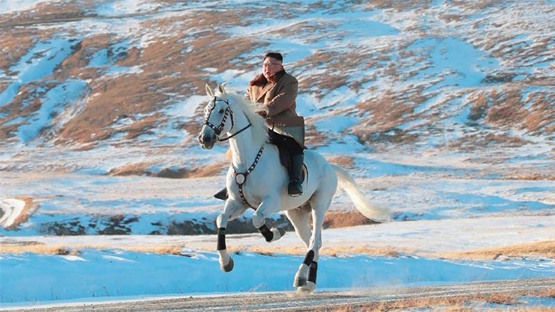 Cum ajung caii de la ferma lui Lenin să fie călăriți pe Kim Jong Un