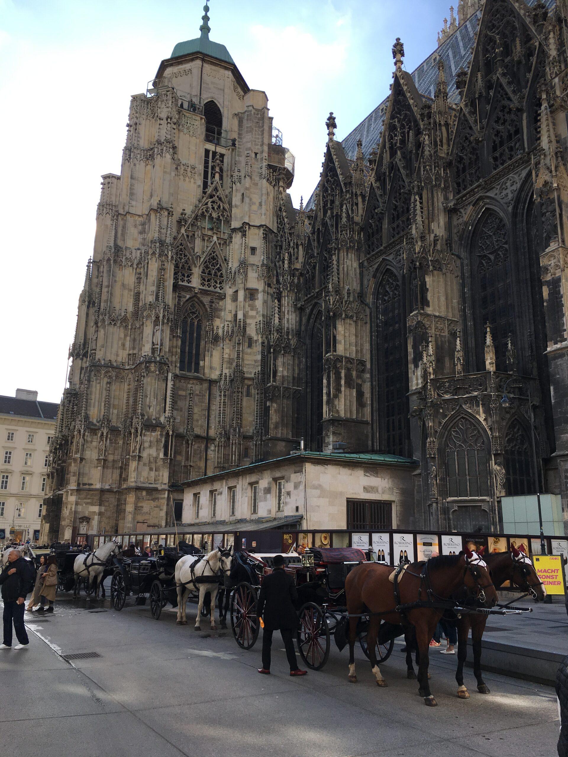 Exclusiv. Vedere din Viena. Febra macaralelor, Gutenberg, cuccu kebap și castorii de pe Dunăre