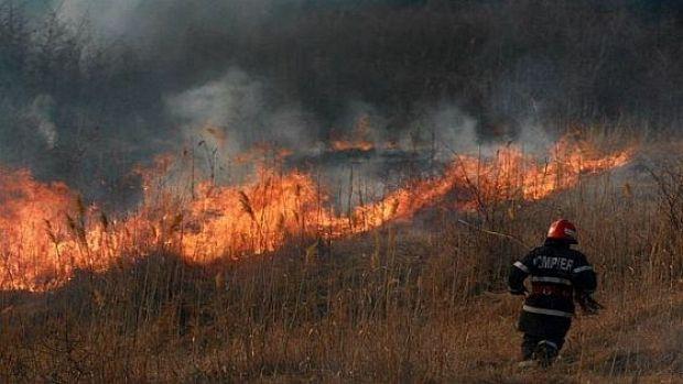 Incendiu violent, sute de hectare au fost pârjolite. Operațiune disperată a pompierilor