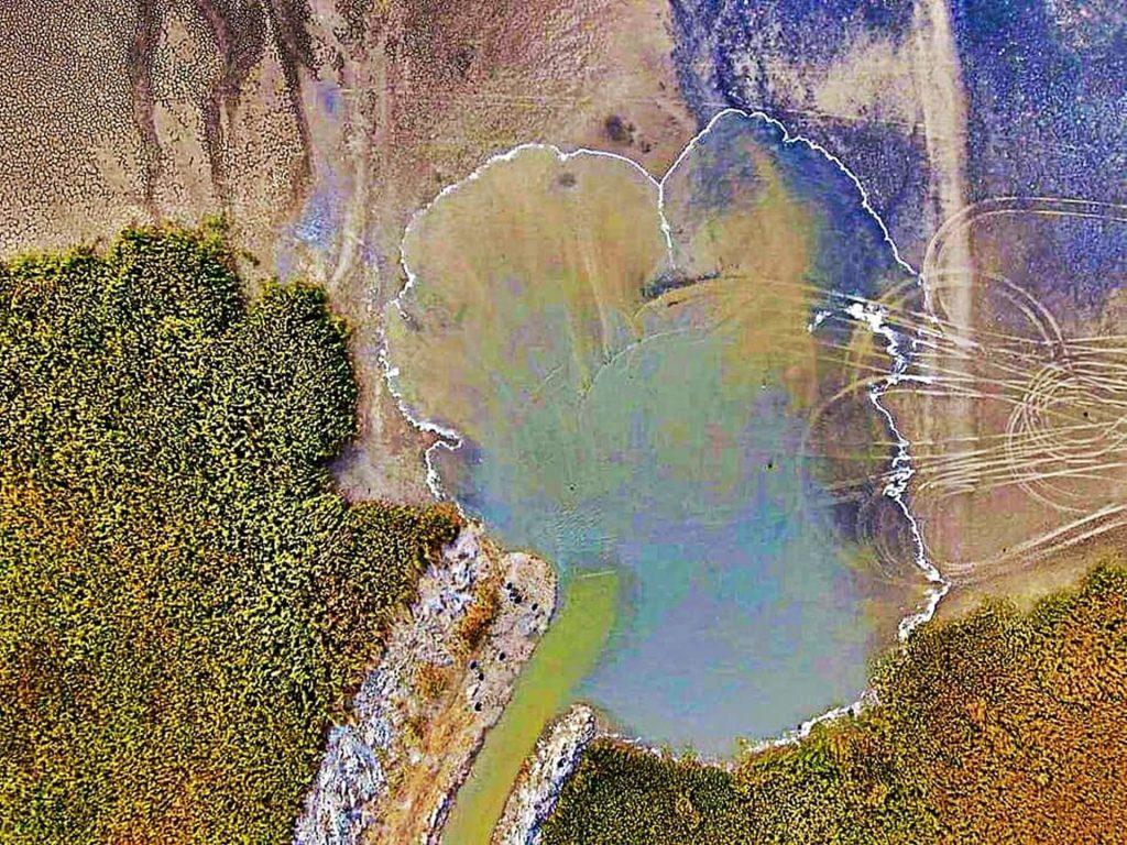 Minune în Dobrogea. Cum a reînviat un lac secat pe 850 de hectare